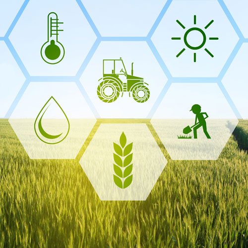 Digital Farming Technology