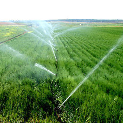 Micro irrigation company of the year